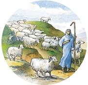 Shepherd_1_2